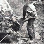 Sipes jako dřevorubec