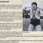 REINHOUDT-VÝKONY